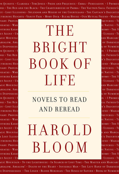 Bright Book of Life: Novels to Read and Reread
